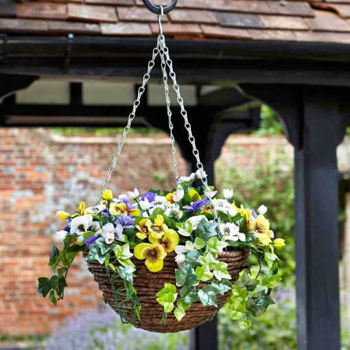 Smart Pansy Hanging Basket
