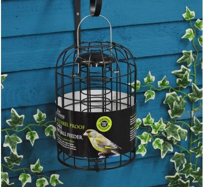 Tom Chambers Squirrel Proof Fat Ball Feeder